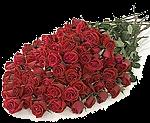 http://perchato4ki.narod.ru/smaily/bolchie_bukety/1.png